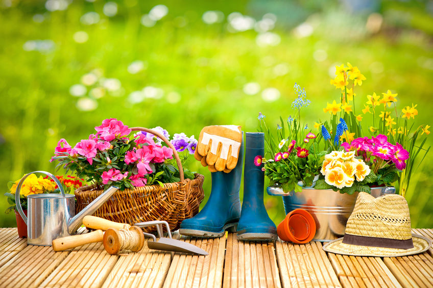 Spring Gardening Tips The Rullo Team Real Estate And Homes For Sale
